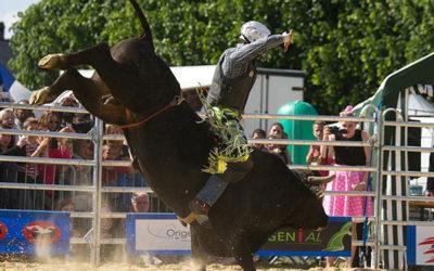 Stefano Baldon: adrenalina allo stato puro