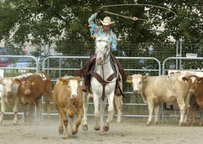 Ranch Roping